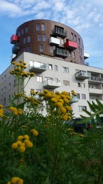 Pronájem, NOVÝ PĚKNÝ zařízený byt 1+kk, 34 m2, Terasa 6 m2, Balkon 4 m2, Vorařská, Praha Modřany