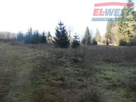 Prodej pozemku na Zadově – Churáňově na Šumavě