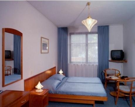 Prodej, Moderní Hotel, 55 pokojů, Praha 3