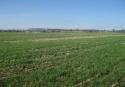 Prodej pozemku v Brně  Slatině - 2