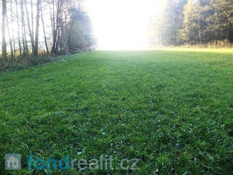 Zemědělské pozemky Kobylí Hlava