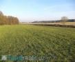 Zemědělské pozemky Kobylí Hlava - 1