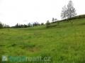 Zemědělské pozemky Obora u Šindelové