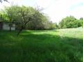 Prodej velkého pozemku s chatou - 4