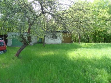 Prodej pozemku - sadu, lesa s chatou 36m2