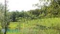 Prodej pozemků v Bohuslavice u Kyjova