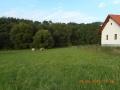 Stavební parcela 1830 m2 v obci Březina - 3