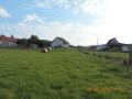 Stavební parcela 1830 m2 v obci Březina - 4