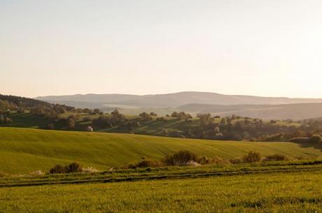 Prodej pozemku 4 922 m2, Oleška