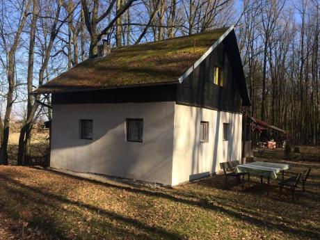 Prodej rekreační chatky, užitná plocha 88m2, pozemek 89m2, veranda, nedaleko Labe, pod Kunětickou horou, Pardubice - Němčice