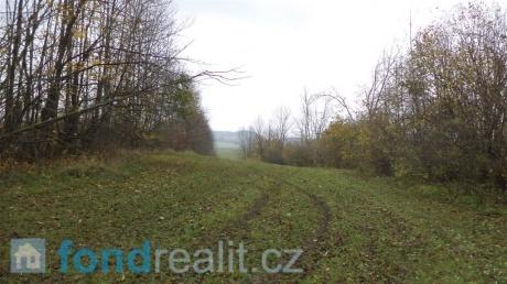 Pozemky Doubravice u Leštiny