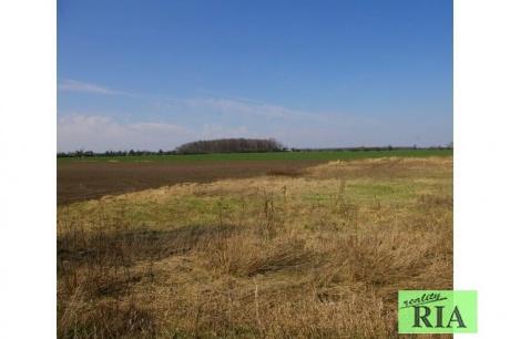 Přední Lhota u Poděbrad - pole (orná půda) o výměře 24.035m2