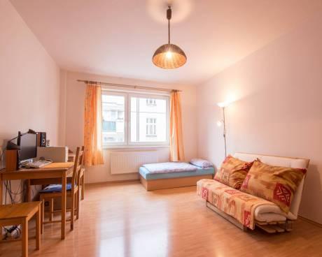 Prodej bytu 1kk 35m2 v cihlovém domě v Sinkulově ulici. k bytu náleží sklepní kóje, možnost dokoupit garážové stání