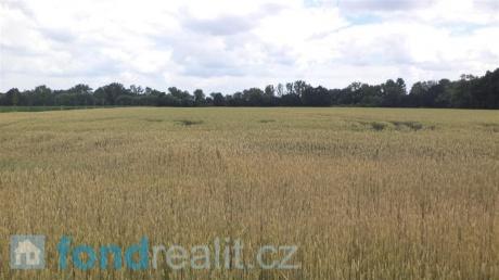 Prodej pozemku Roudné