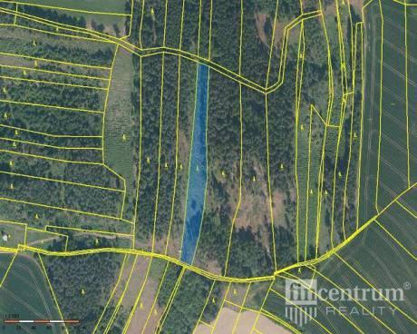 Prodej lesa 28936 m2, Radkov