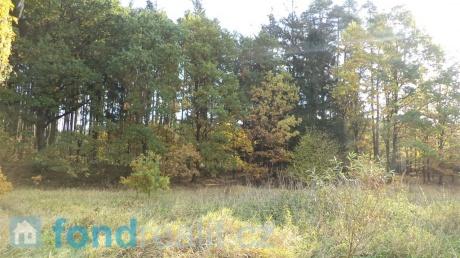 Prodej pozemků Planá nad Lužnicí
