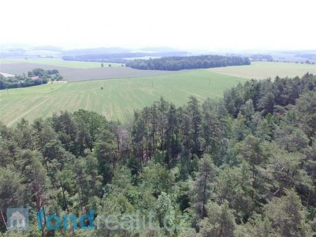 Prodej lesního pozemku Křekovice u Vyšetic