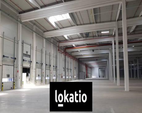 Pronájem, sklad, Lovosice, 5000 m²