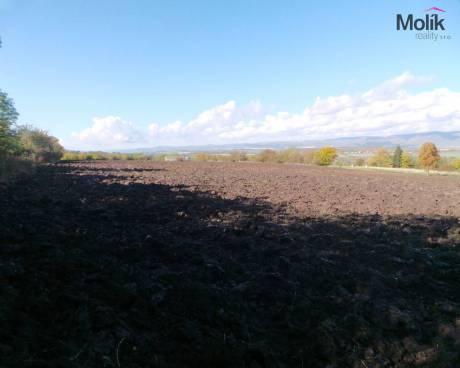 Prodej stavebního pozemku o celkové rozloze 17552 m2, Havraň, obec Havraň