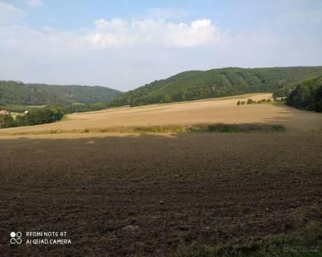 Prodej zemědělské půdy Račice na Vyškovsku, CP 5837m2