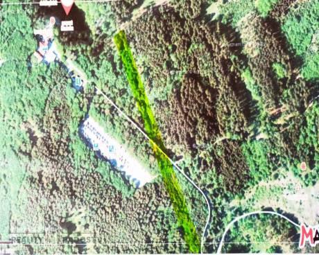 Prodej lesního pozemku Vilémovice u Macochy