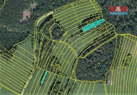 Prodej lesa, 420 m², Vysoká u Jevíčka