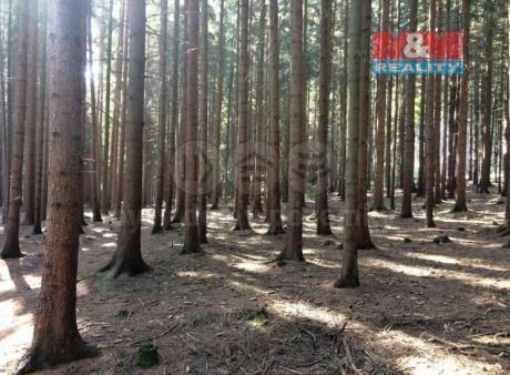 Prodej lesa, 2924 m², Bzenec