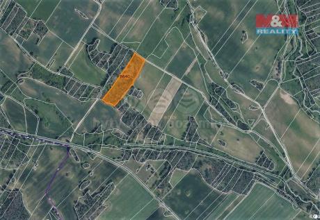 Prodej lesa, 3304 m², Trnava u Třebíče