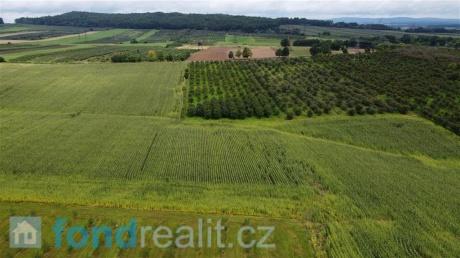 Prodej zemědělského pozemku Krtely