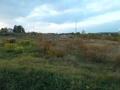 Pozemek v Blatné
