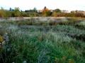 Pozemek v Blatné - 2