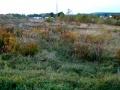 Pozemek v Blatné - 4