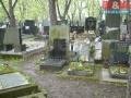 Prodej, hrob, Praha 2 - Vinohrady - 1