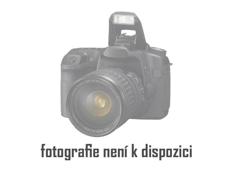 Asistentka Brno