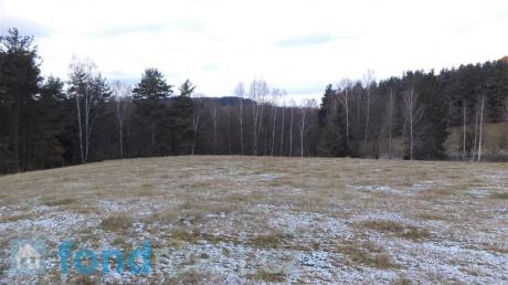 Prodej pozemku Rychnov u Nových Hradů