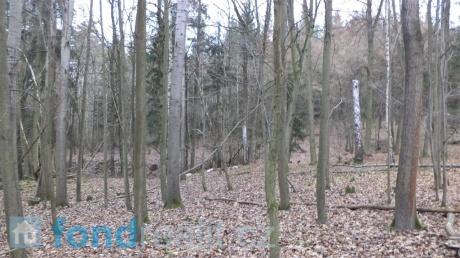 Prodej pozemků, Nahoruby-louka, les