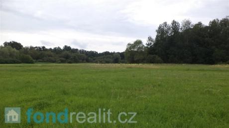 Prodej pozemku Stará Lípa