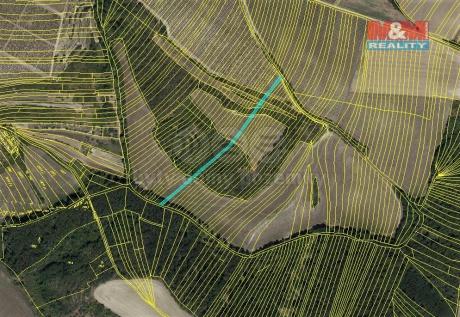 Prodej pole, 593 m², Křepice u Hustopečí