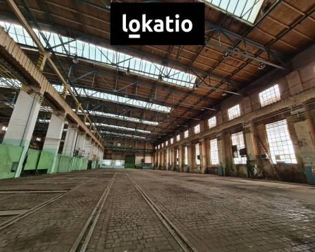 Pronájem, sklad, Hradec Králové, 1000 m²
