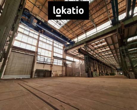 Pronájem, sklad, Hradec Králové, 5000 m²