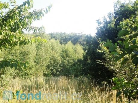 Pozemek Dětmarovice