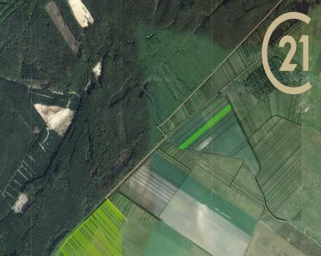 Prodej, zemědělská půda, Plavecký Peter, Slovensko, 35226 m²