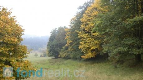 Prodej pozemku Málkov u Přimdy